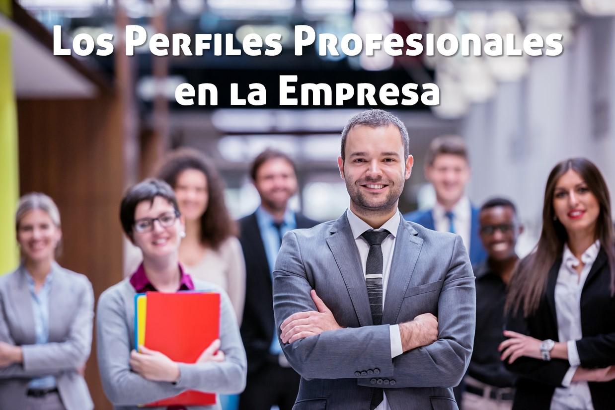 perfiles-profesionales